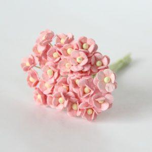 Лютик розово-персиковый