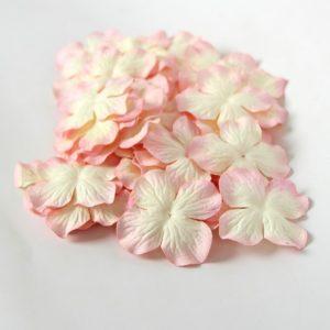 Гортензии большие молочно-розовые
