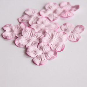 Гортензии маленькие светло-розовые