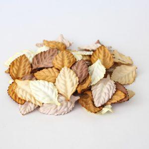Листья без стебельков - Коричневый микс