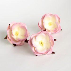 Дикая роза розовый+белый, 1 шт.