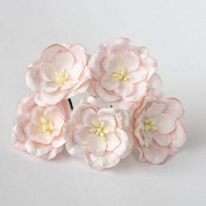 Магнолии бледно-розовые