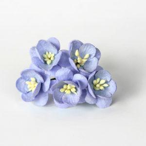 Цветы вишни голубые, 5 шт.