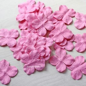 Гортензии большие розовые, 10 шт.