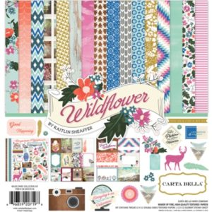 Набор бумаги Wild Flower 30х30 см CBWD22016 Echo Park Paper/Carta Bella