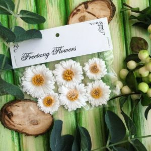 Цветы Freetany Flowers – 20 Ромашки