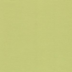 Кардсток текстурированный Оливковый, артикул FD1100579