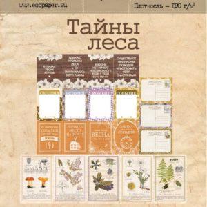 "Набор карточек ""Тайны леса"" для скрапбукинга, артикул sf200-01"